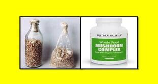 فزودن اسپان و مکمل غذایی به کمپوست مصرف شده