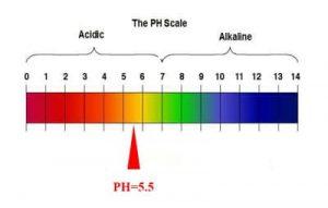 بهترین PH رشد مایکاگون