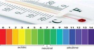 تاثیر دما و ph بر مایکاگون و ورتیسیلیوم