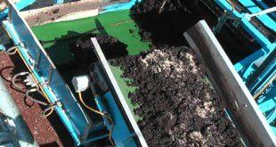 casing machine 310x165 - ماشین خاک پوششی سالن های پرورش قارچ دکمه ای