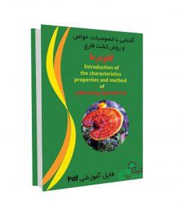 ganoderma book 257x300 - خواص قارچ گانودرما + قارچ گانودرما چیست؟ +فیلم