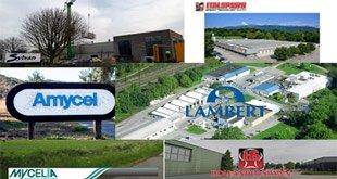 Photo of ۶ شرکت برتر تولید بذر قارچ در جهان