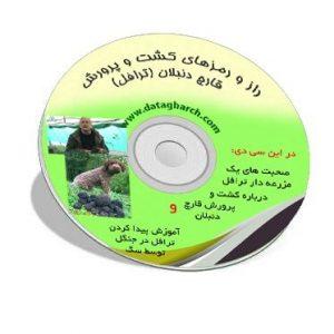 سی دی آموزشی قارچ ترافل