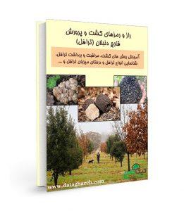 کتاب راز و رمزهای کشت و پرورش قارچ دنبلان
