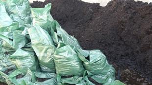 Photo of مزایای خاک پوششی قارچ دکمه ای چیست؟